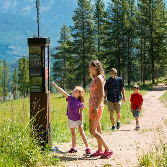 Family Hikes in Vail Colorado