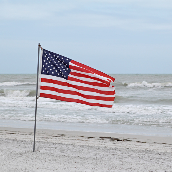 Sea Stars & Stripes- 4th of July Happenings